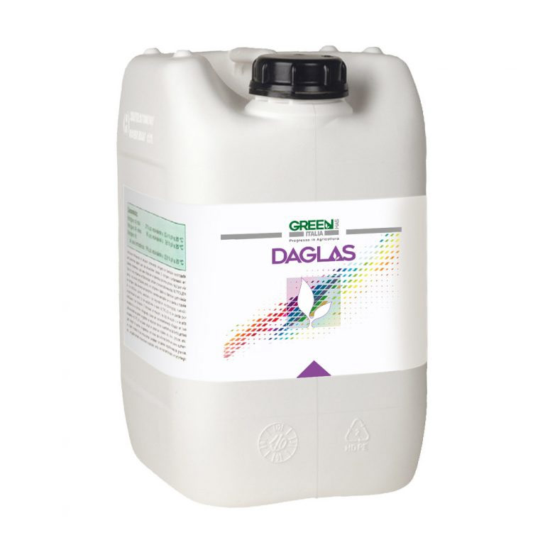 Daglas